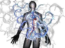 cardiac troponin I